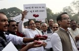 Former Indian finance minister protests economic policies