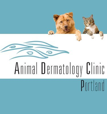 Animal Dermatology Clinic Portland